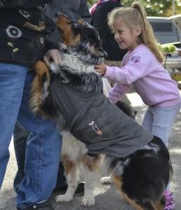 girl pets a dog